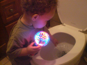 Boy about to put a toy in a toilet.